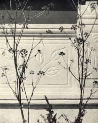 Фрагмент ограждения галереи. Лазо. Иллюстрация из книги «Каменный цветок Молдавии». Гоберман Д.Н. 1970