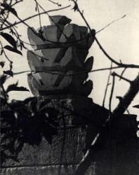 Цветочные каменные изваяния, увенчивающие воротные пилоны. Село Устье, Дубоссарский район. Иллюстрация из книги «Каменный цветок Молдавии». Гоберман Д.Н. 1970